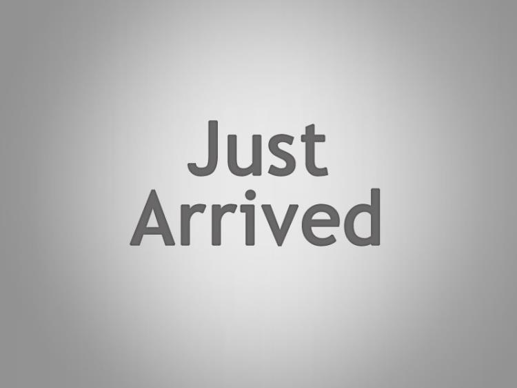 2009 NISSAN ELGRAND 4D WAGON E51 HIGHWAY STAR BLACK LEATHER